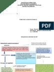 PDF Principios Constitucion