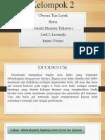 Ppt Duodenum