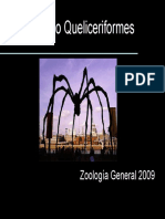 Queliceriformes.pdf