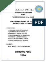 DINAMICA FAMILIAR Y CICLO EVOLUTIVO.docx