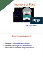 20 - Development of Face (HD)