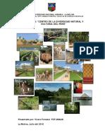 Proyecto Centro Cultural Peru
