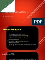 Metabolisme Mineral
