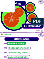 Y8 Respiration.ppt