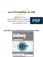 KDIGO AKI Guideline Cass 2014