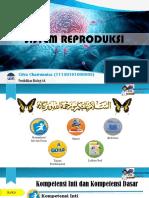 Ppt Sistem Reproduksi