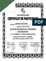 Diploma Participare.Dr.Leoveanu T.Ionut Horia