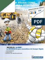 LlantasWeb_Michelin_XDR2_27.00R49_18627.pdf