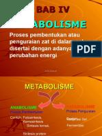 Bab IV Metabolisme