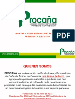 Presentacion del sector caña azucar en Colombia