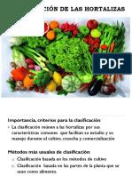 Clasificación de Las Hortalizas (2)