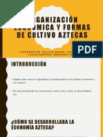 Organización Económica y Formas de Cultivo Aztecas