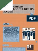 Universidad Tecnologica de Los Andes N1