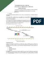3. La Luz, Fotosintesis, Respiracion, Plantas c3 c4 y Cam