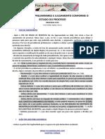 Foca No Resumo Providencias Preliminares e Julgamento Conforme o Estado Do Processo1