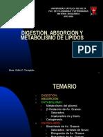 Metabolismo de Lipidos 121015101951 Phpapp01