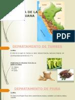 Agricultura de La Costa Peruana