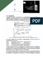 Cap10_Diseno_en_Concreto_Armado_Ing._G._Otazzi.pdf