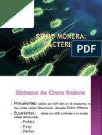 Bacteriasñp
