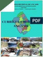 CURRÍCULO REGIONAL -.docx