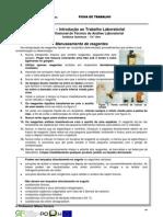 INFO - Manuseamento de Reagentes