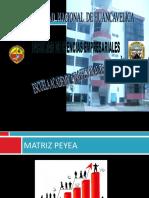 Matriz Peyea Clases