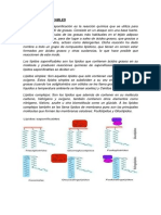 LIPIDOS-SAPONIFICABLES y INSAPONIFICABLES.docx