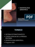 1.- Diplomado Fonoaudiologia (1)