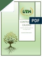 control de calidad.pdf