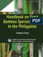 Handbook Bamboo Species Bamboo Plants