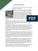 EL PLÁTANO.docx