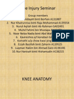 Knee Injury Seminar 2015
