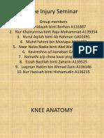Knee Injury Seminar 2015