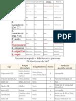 HIDATIDOSIS (1)