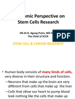 Perfective Stem Cell in Islam