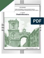 165784423-Golia-Fluidodinamica-2005.pdf