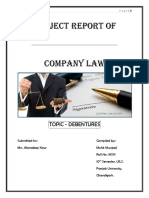 Mohit's Company Law Project(1)