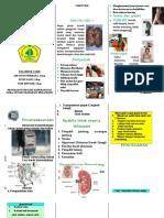 leaflet_ckd.doc.doc