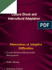 Culture Shock (Intercultural Adaptation).ppt