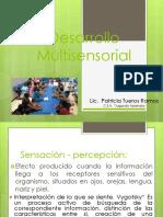 10. Desarrollo Sensorial