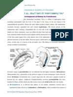 urogenitalsysteminvertebrates-140301155850-phpapp02