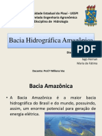 Bacias Hidrográficas amazônica