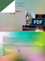 bao chau profile.pdf