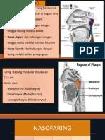 Anatomi Faring