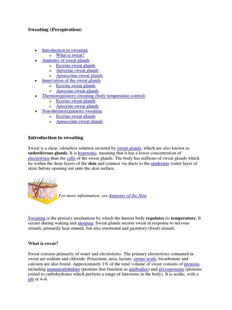 Sweating Perspiration Organ Anatomy