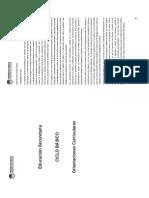 Educación Secundaria - Orientaciones Curriculares - Primer Ciclo