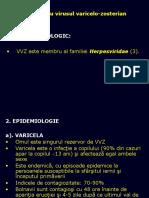 3. Boli Eruptive-Varicela b