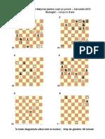 CNJ-Dezlegari-Proba-08-ani.pdf