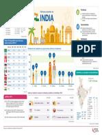 Perfil Del Consumidor India