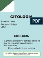 1-ano-citologia-1